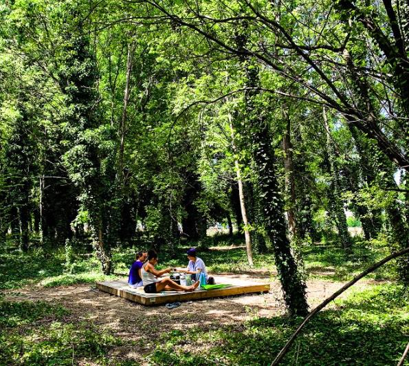 Parc du Bois des Noyers, prix Réalisations Espaces naturels et agricoles du Palmarès du Paysage 2021, Kansei TV